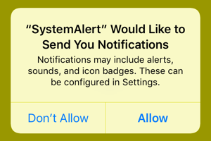 System alert would like to send you notifications