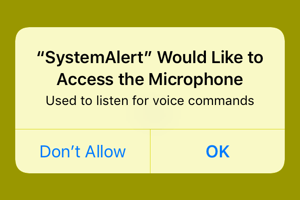 System alert Would like to access the microphone