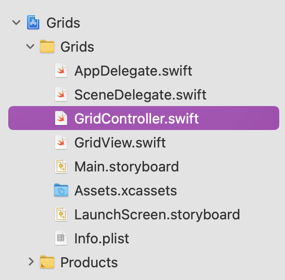 Xcode Project File navigator